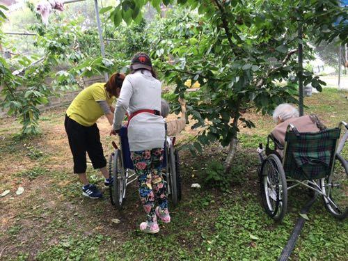 農園日誌 20160607車椅子のお客さん