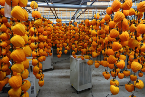 あんぽ柿って知ってます?日本古来のドライフルーツがメチャうまなんです